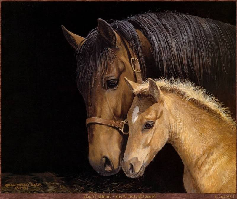Animals - Page 2 Horses-2