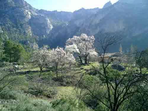 La Osera, Sierra de Las Villas