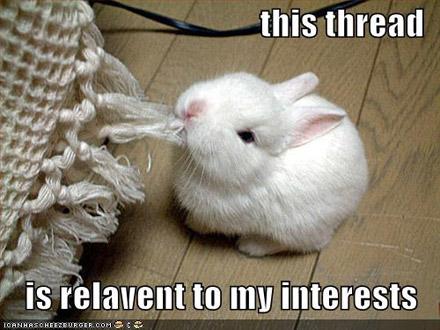 Elise Vogel - Liechtenstein App Funny-bunny-lrg