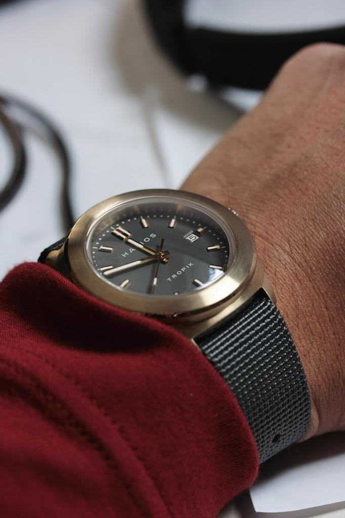 Bronze watches in general... - Page 2 TropikBGrey3