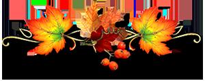 """Поздравляем победителей конкурса """"Краски осени""""! Edaf79677b141a44d508527cf883f947"""