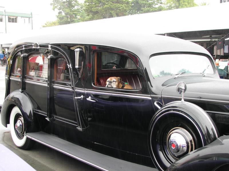 NZ American vehicle day, lotsa pics...... Tysonmoonshineday115
