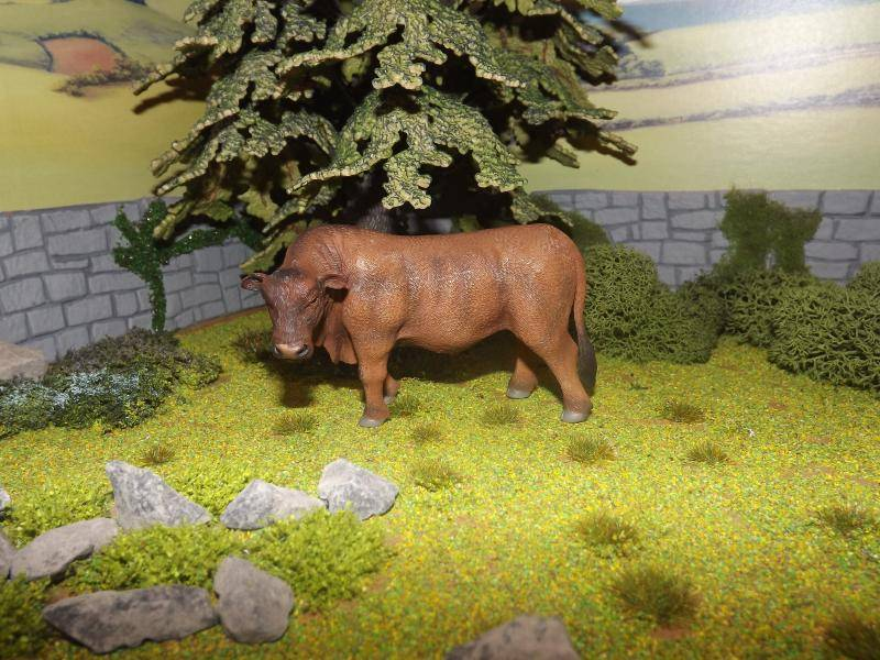 My collecta cattle new photos added november 30th DSCF5658