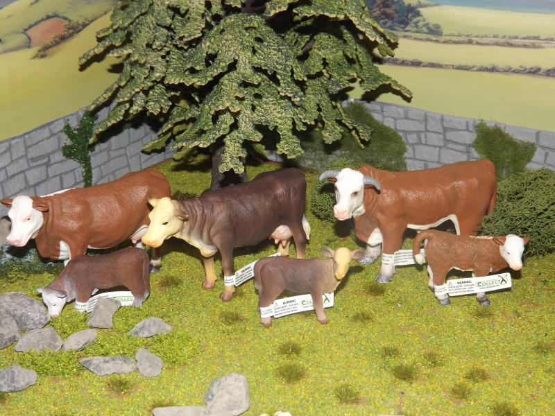 My collecta cattle new photos added november 30th DSCF5782