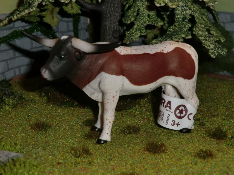 My first battat Cattle CIMG4596
