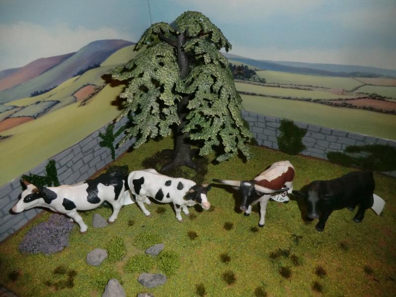 My first battat Cattle CIMG4604