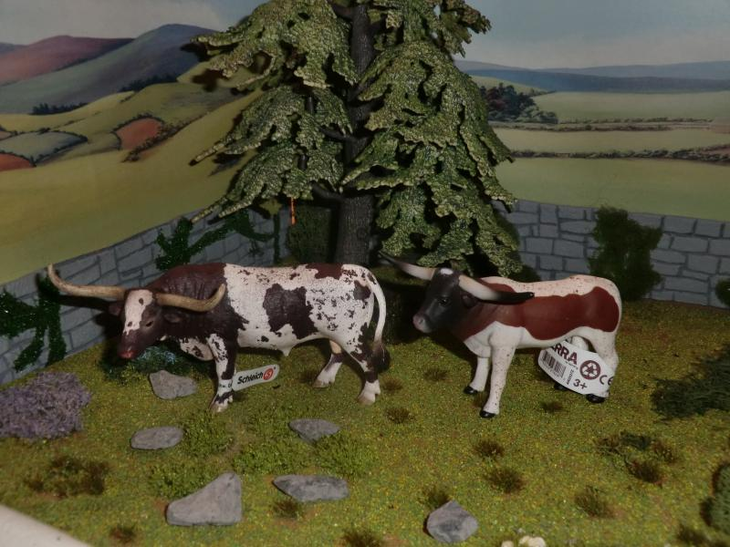 My first battat Cattle CIMG4719