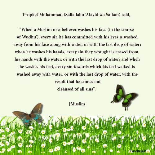 Hadith Graphics - Page 2 066