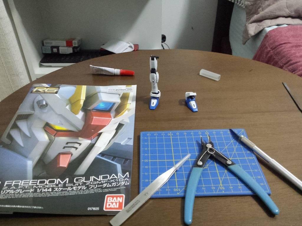 [Review] Freedom Gundam RG - By castilhoglauco IMG_20150326_025035_zpsdpk7ay5r