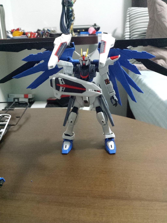 [Review] Freedom Gundam RG - By castilhoglauco IMG_20150328_044358_zpsp6okc8s1