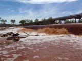 Recent Pilbara Trip Th_cane1