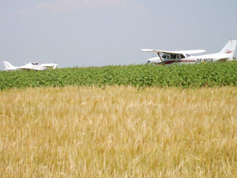 Drobeta Fly In 2012 - Fifth edition DSCF5175