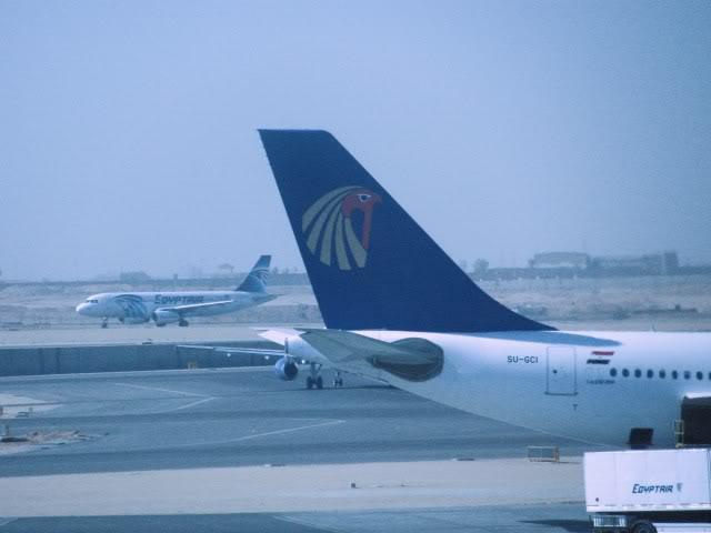 صور حديثة جدا , مبنى ( 3 ) , مطار القاهرة الدولي IMG_2369