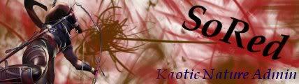 banner for website. SoRed-1