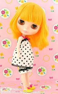 Prima Dolly Marigold (PDMa) // RBL Marigold1