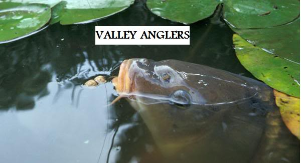 Valley Anglers
