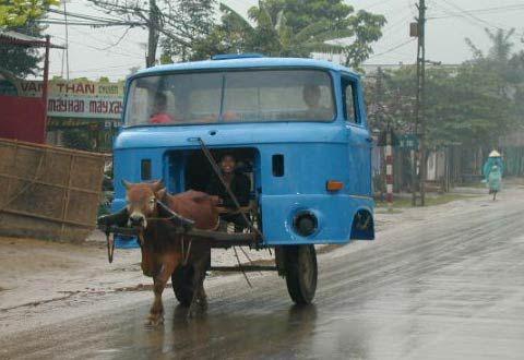 Chi co the la o Viet Nam Horsepower