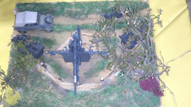 Résurection de matériel allemand DSC_0769_zpsd471cbfb