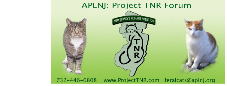 Project TNR