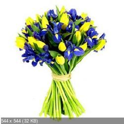 Поздравляем с Днем Рождения Елену (МЕМ)  D8027bde4c0dbf021ececfbf447dd01a