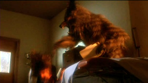 Top 10 favorite films of all time? The-howling-02_zps3f952a33