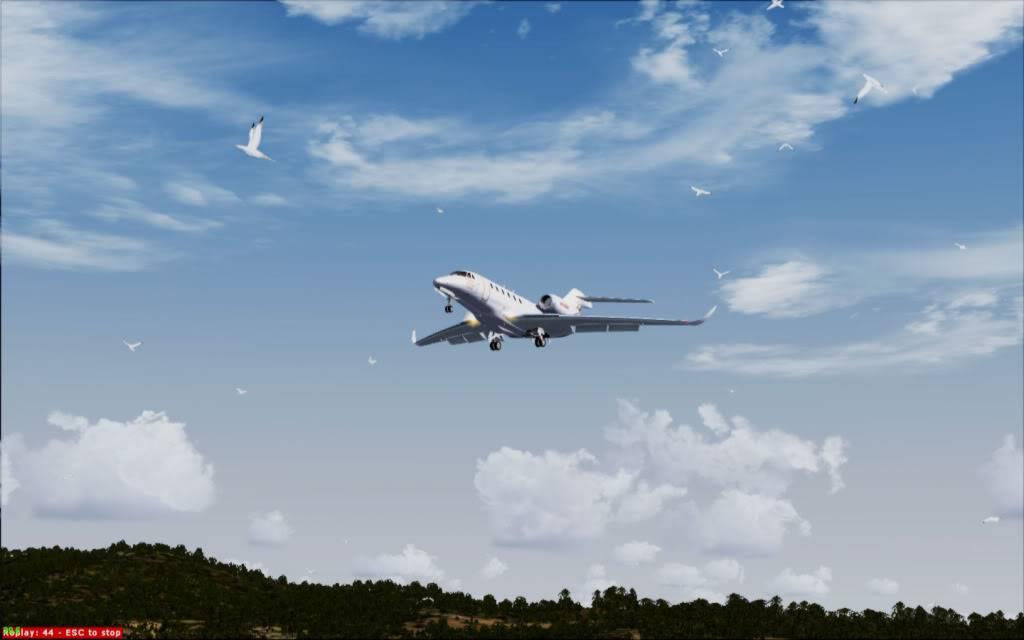CX Brindabela enfrenta os gansos em St Helens 2012-4-29_20-0-51-329