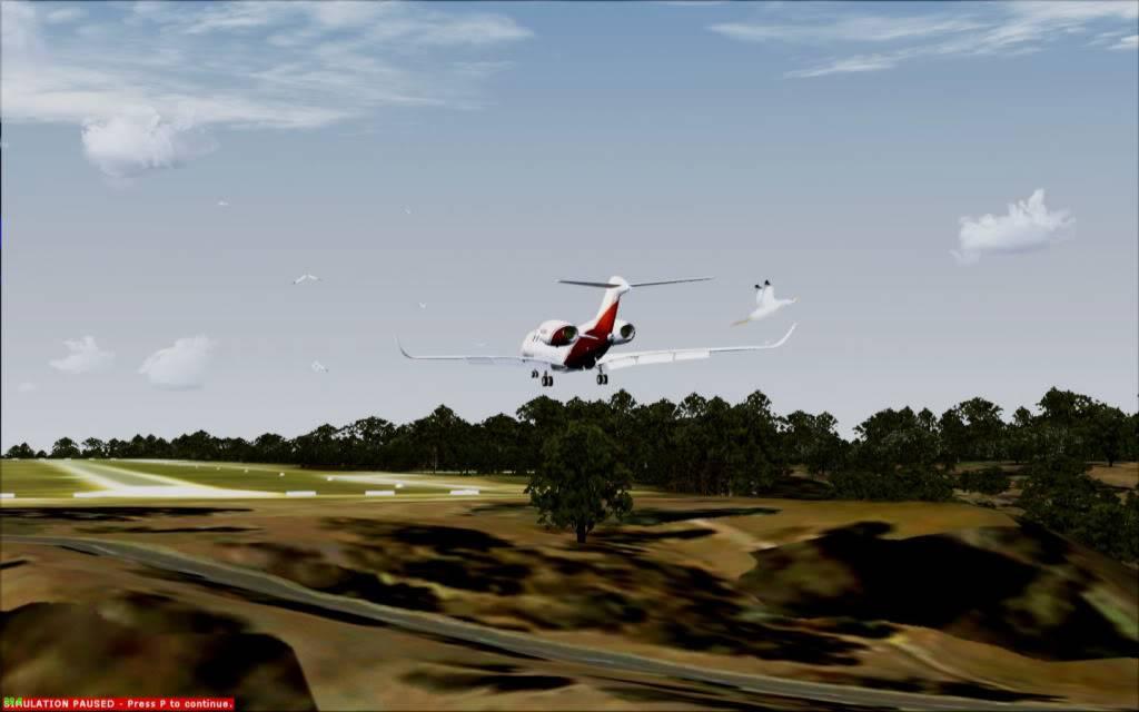 CX Brindabela enfrenta os gansos em St Helens 2012-4-29_20-1-8-837