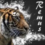 RemusXIII