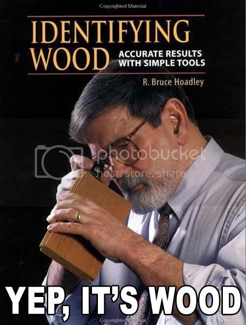 The New and Improved Funny Picture Thread - Page 2 Identifywood