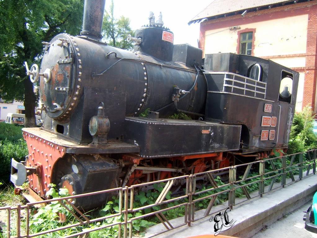 Locomotive cu aburi DSCF3226