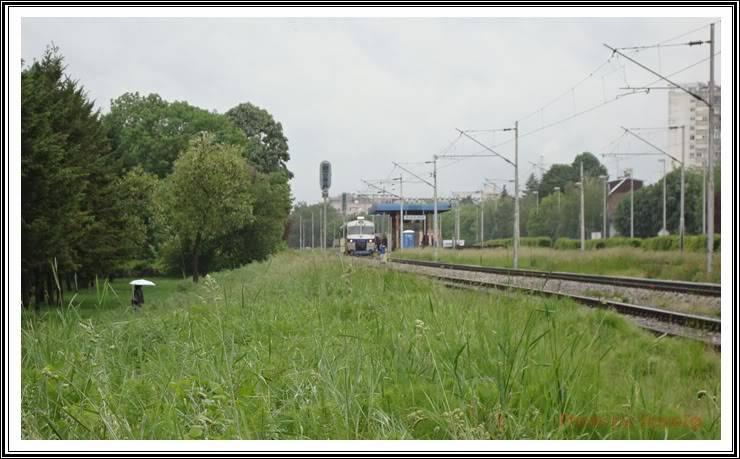 Vlakovi u daljini - Page 2 DSC00747
