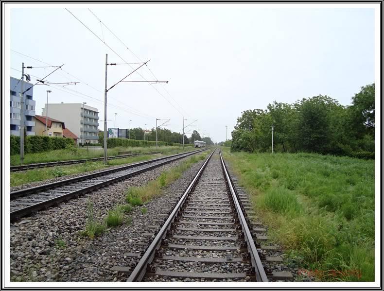 Vlakovi u daljini - Page 2 DSC00768