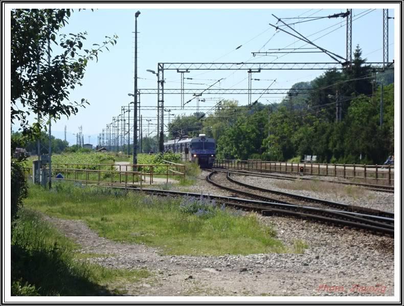 Vlakovi u daljini - Page 2 DSC01003