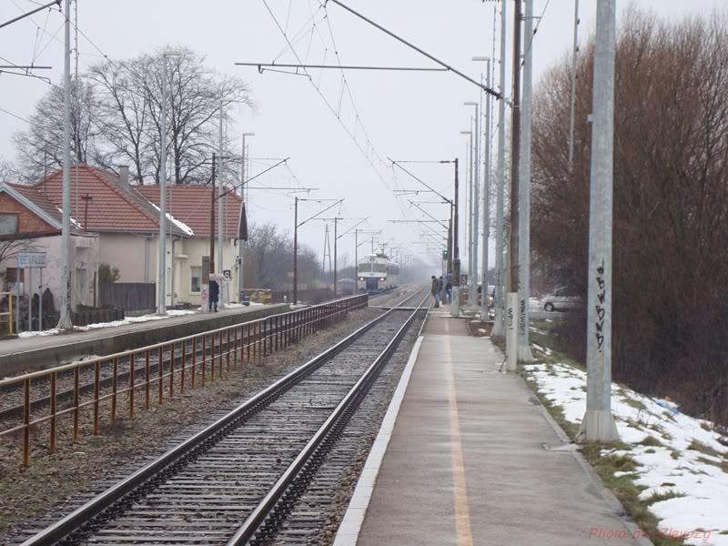 Vlakovi u daljini DSC08045