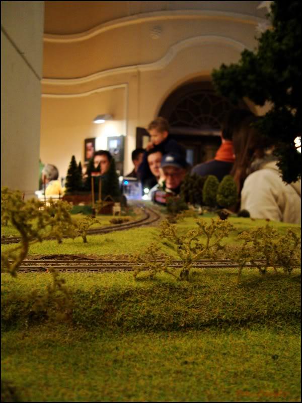 XII. Susret željezničkih modelara (Subota, 26.11.2011.) DSC09383