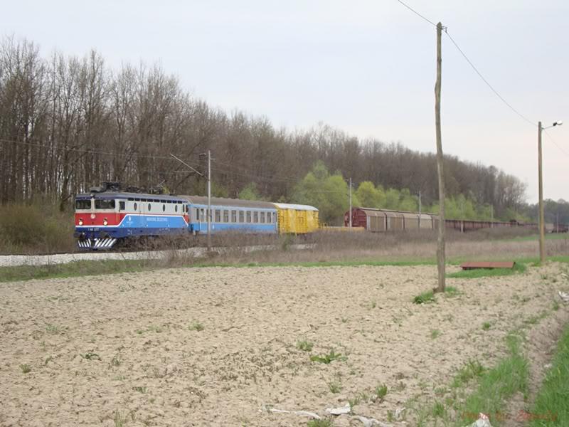 Teretni vlakovi - Page 2 DSC09598