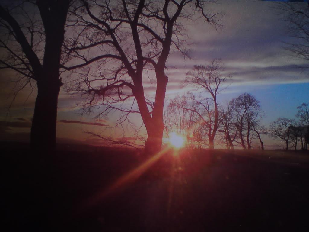 Naturbilder DSC02059