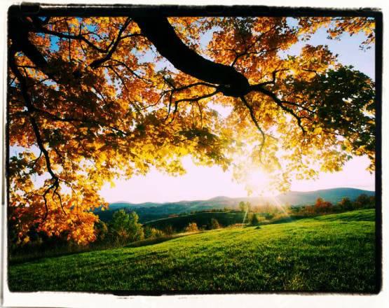 September Valley