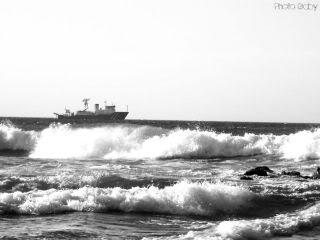 Surfeando en Blanco y Negro Domesmediano