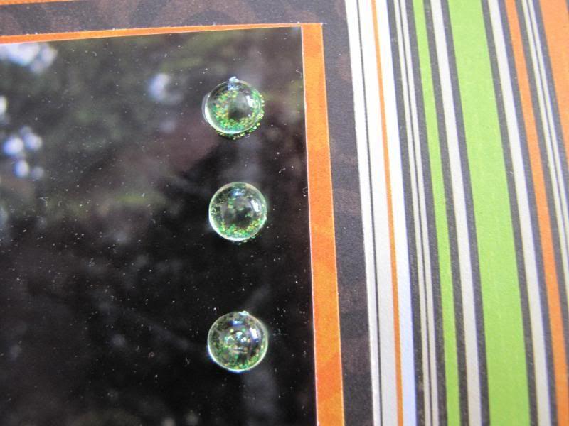 Scrappin frog - Mai 2009 édité 25 mai IMG_0617