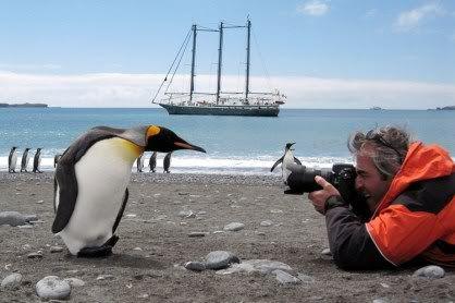 Foto nga bota e kafsheve dhe zogjve  - Faqe 2 A870ED3BF7B9787402D400CA28B81