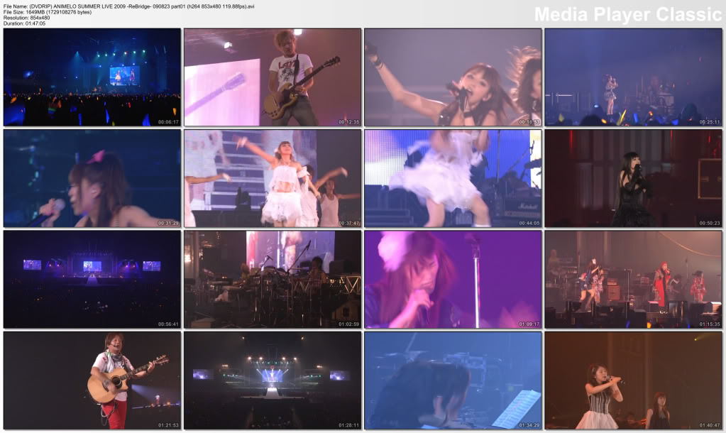 Animelo Summer Live 2009 ReBridge [DVDRip] 2