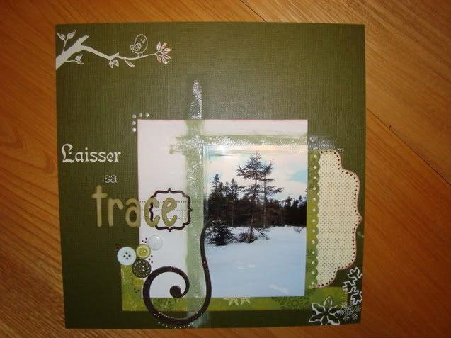 Défi de janvier de nysty- page avec photo de la nature ! DSC04025-1-1