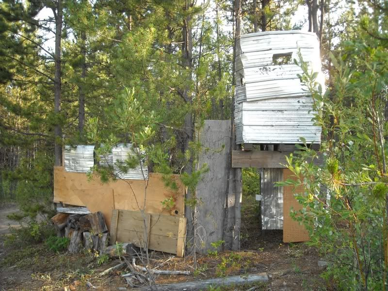 Hill 313 Field pics NewtowerA