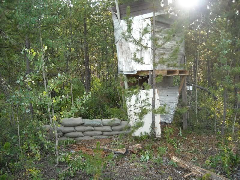 Hill 313 Field pics NewtowerB