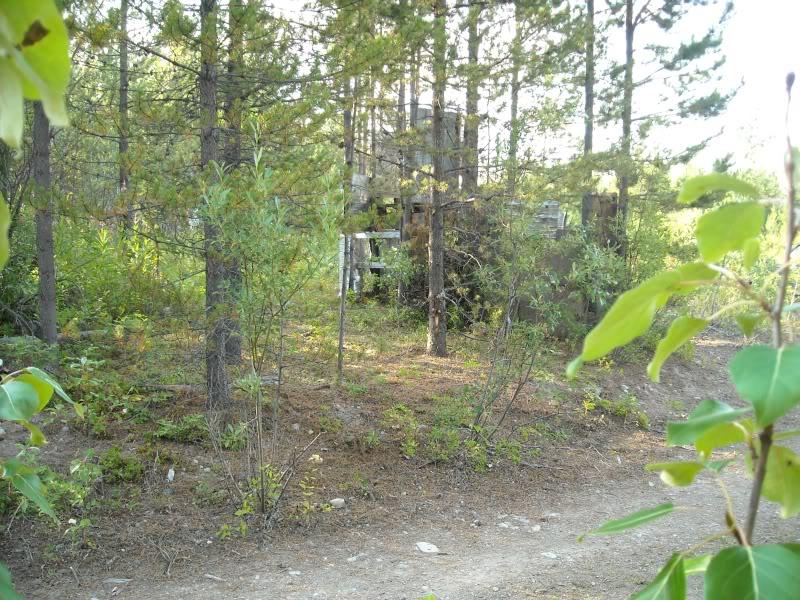 Hill 313 Field pics BackofA