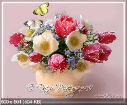 Поздравляем с Днем Рождения Наталью (Siachka) 3498279745fdfda45a28980e3142b17c