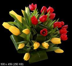 Поздравляем с Днем Рождения Марину (Мариса) 68161375b33f27e395a8b9e2bf63b47a