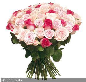 Поздравляем с Днем Рождения Аллу (Belka) 4cfad73c5e340073bb4436924493914a