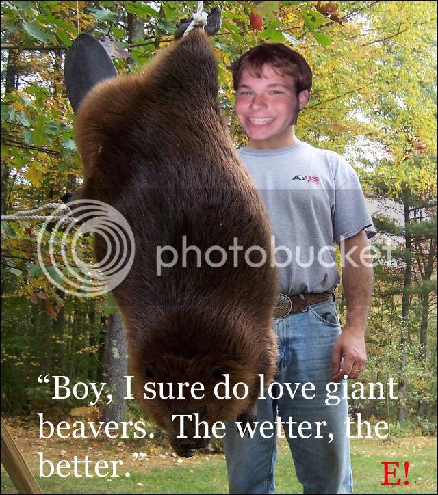 Beaver's Den - Page 28 Gaintbeaver